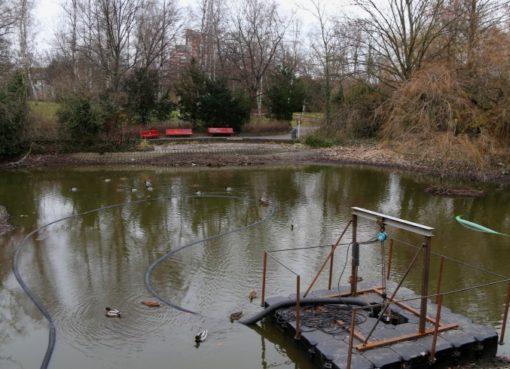 Teich im Stadtpark Steglitz