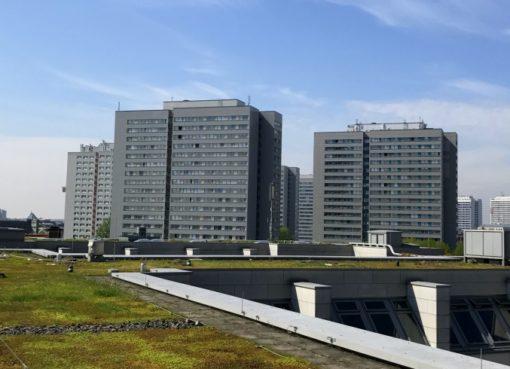 Berliner Gründach-Wettbewerb gestartet