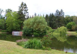 Teich im Gemeindepark