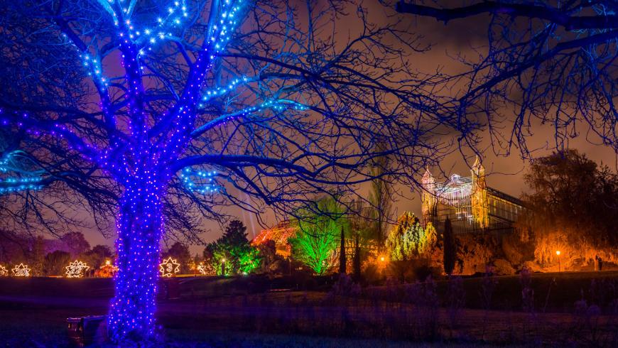 Weihnachten im Botanischen Garten