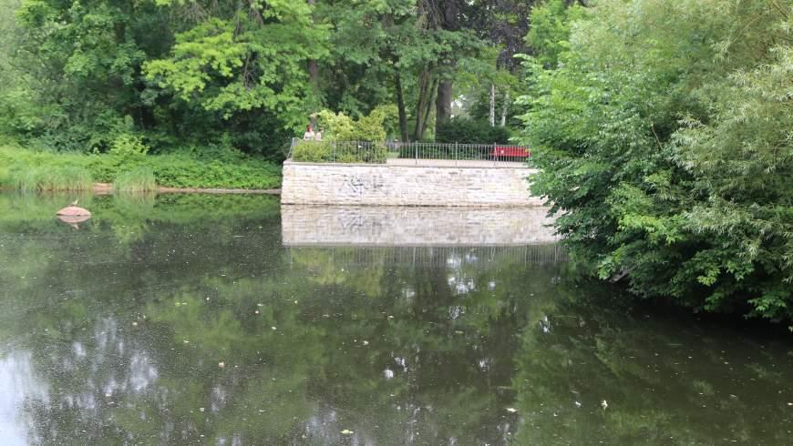 Teich im Gemeindepark Lankwitz am 20.6.2021: eine graue stinkende Brühe - Foto: © Michael Springer